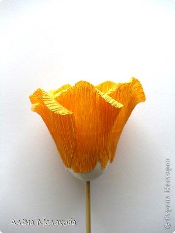 Мастер-класс Флористика Роза из гофрированной бумаги Бумага гофрированная Клей фото 24