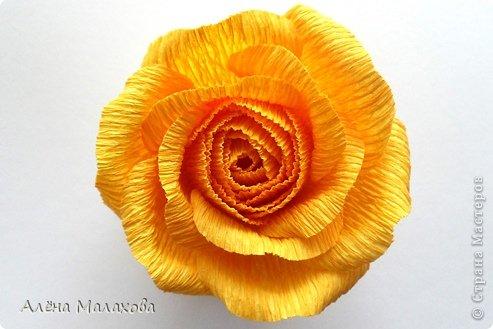 Мастер-класс Флористика Роза из гофрированной бумаги Бумага гофрированная Клей фото 25