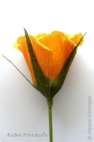 Мастер-класс Флористика Роза из гофрированной бумаги Бумага гофрированная Клей фото 27