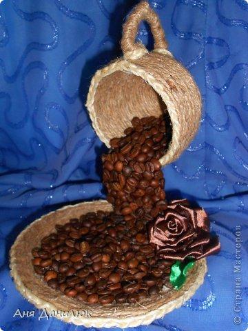вот такое первое кофейное деревце у меня выросло  фото 4