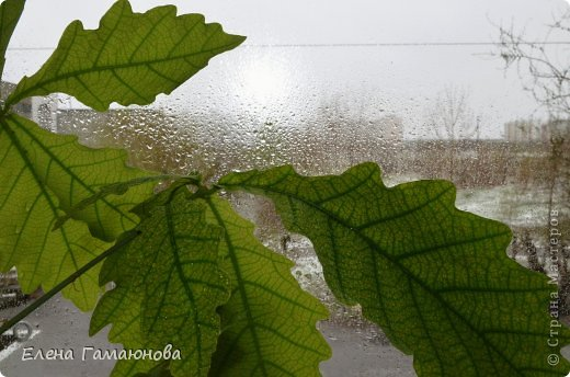 Оказывается,плохая примета-убирать зимние вещи раньше июня... :) фото 3