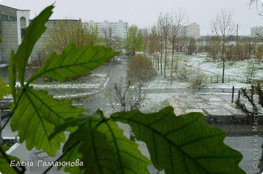 Оказывается,плохая примета-убирать зимние вещи раньше июня... :) фото 4