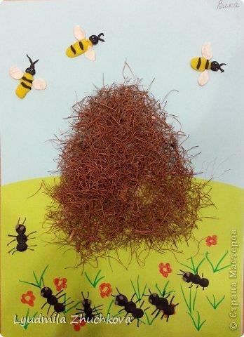 Поделки с детьми муравья