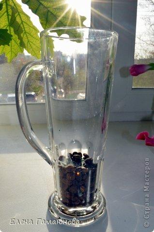 Тюльпан с надписью фото 2