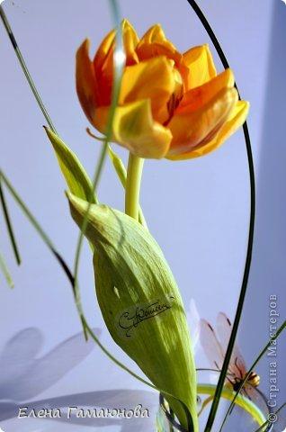Тюльпан с надписью фото 10