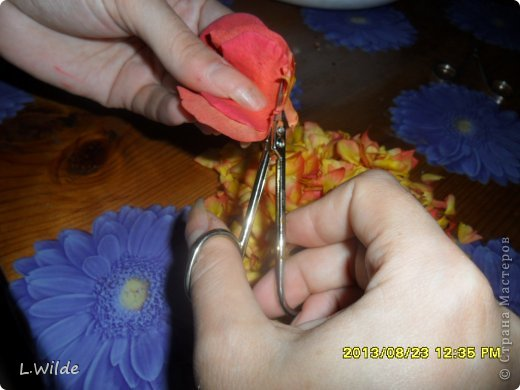 Кулинария Мастер-класс Рецепт кулинарный Варенье из лепестков роз МК Овощи фрукты ягоды фото 2
