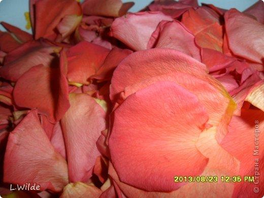 Кулинария Мастер-класс Рецепт кулинарный Варенье из лепестков роз МК Овощи фрукты ягоды фото 3