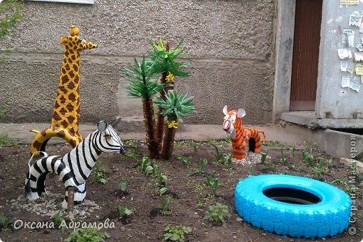 """Добрый день, жители """"Страны Мастеров"""". Очень хочу показать Вам красоту в нашем дворе! Наш """"Мадагаскар"""" !"""