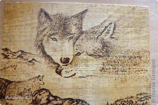Волки выжигание рисунок