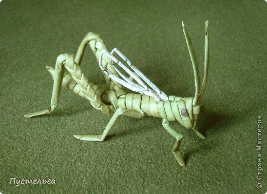 Кузнечик зелёный, обещанный )) Трубочек нужно всего 12 штук, длина 30 см, две из них тоненькие для крыльев.