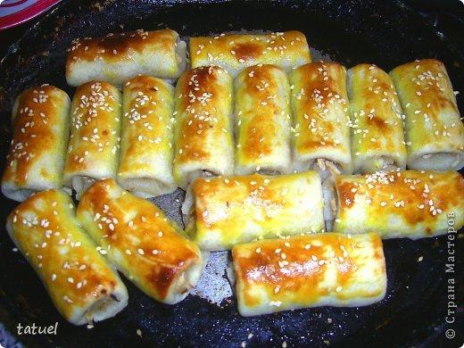 Всем здравствуйте! Сегодня рекомендую рецепт приготовления закусочных трубочек. Часто остается вареное куриное мясо. В этом рецепте мяса много  не надо- хватило недоеденных остатков от половинки курочки.  фото 14