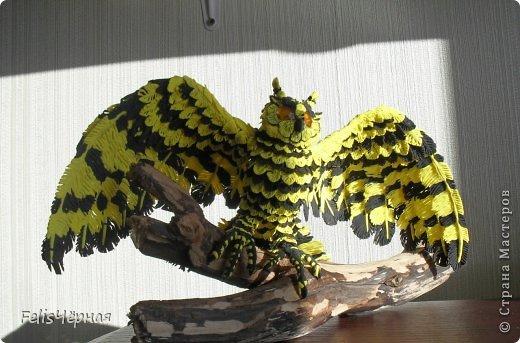 sov Поделки — птицы своими руками из разных материалов