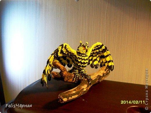 sova_moya Поделки — птицы своими руками из разных материалов