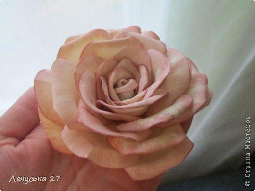 Продолжаются мои муки творчества. Опять я с розами :). Добиваюсь поставленного перед собой результата. фото 1