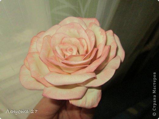 Продолжаются мои муки творчества. Опять я с розами :). Добиваюсь поставленного перед собой результата. фото 2