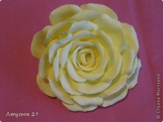 Продолжаются мои муки творчества. Опять я с розами :). Добиваюсь поставленного перед собой результата. фото 3