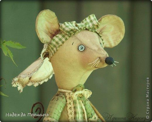 Мышь Шуша - обладает не только обворожительной внешностью, но ещё и имеет добрый характер и скромный нрав. Рост стоя - 31см, сидя - 23см   фото 4
