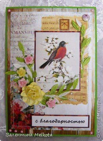 Эти похожие открытки делала на выпускной для тренера по шахматам и для директора Дома творчества. Они обе женщины пенсионного возраста, но думаю, что птичек, цветочки и рюшечки любят все женщины и в любом возрасте. Они обе большого формата 21х15 см. фото 5