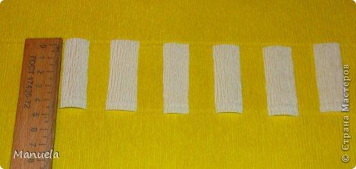 Мастер-класс Поделка изделие Свит-дизайн День рождения Бумагопластика Чемоданчик с камелиями  МК КАМЕЛИИ  Бумага гофрированная Бусинки Картон Пенопласт Продукты пищевые Сутаж тесьма шнур Ткань фото 14