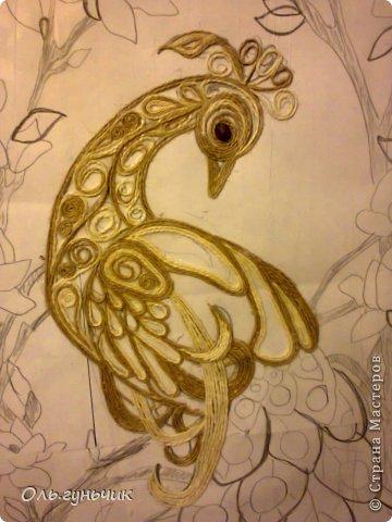Картина панно рисунок Мастер-класс Моделирование конструирование Филигранный павлин МК Шпагат фото 8