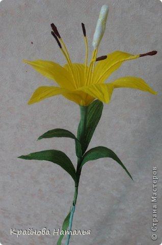 Всем здравствуйте! Продолжаю учиться кристальным цветам... На прошедшей неделе дома появилась вот такая вазочка с жёлтыми лилиями.  фото 7