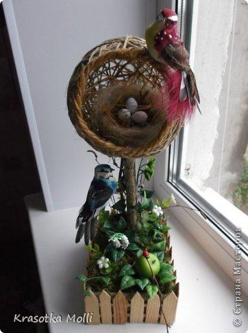 семейное гнездо) фото 3