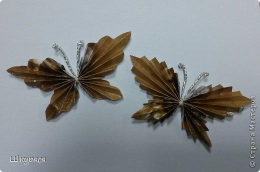 Мастер-класс МК новых крылышек для бабочек Бумага фото 1