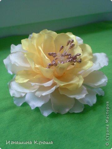давно засматривалась на такие цветы ,  но не было тычинок (у китайцев долго ждать, а у нас городе не нашла) потом решила сделать пат сама- оказалось это просто - мука и клей ПВА  .  цветок размером- 13см.    по мастер-классу stranamasterov.ru/node/781670      только я взяла меньшее кол-во лепестков фото 3