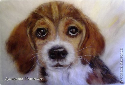 Доброго времени суток! Хочу рассказать как я рисую своих животных на примере вот такой собачки. Для работы потребуется шерсть разных цветов (черная, коричневая, бежевая, белая, рыжая). Кусок флизелина, игла для валяния №38, рамка со стеклом  важный инструмент - пинцет. фото 12