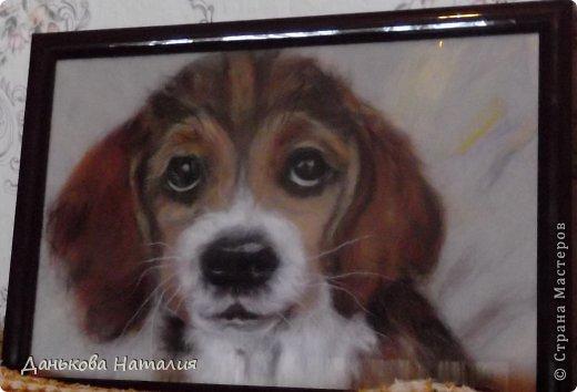 Картина панно рисунок Мастер-класс Валяние фильцевание МК Картина из шерсти Бобик Шерсть фото 1