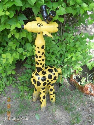 таких жирафов сделала, чтоб детям в песочнице было веселее:) фото 6