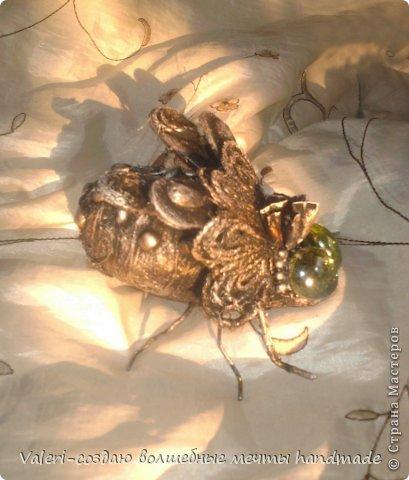 Привет Вам, дорогие ДРУЗЬЯ!!! Сегодня к Вам с мелочовкой, но с симпатичной на мой взгляд))  А вдохновила меня на создание мушки, Анюта Вятская (https://stranamasterov.ru/node/786132) с её замечательными насекомышами, а так как делаются они элементарно и ооочень быстро, то сегодня в промежутках между основной работой(сплела пуфик, плету второй, потом покажу) создалось вот такое чудо: фото 3