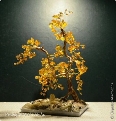 Первое дерево фото 8