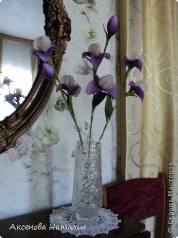 Здравствуйте, жители СМ. Сегодня хочу поделиться с вами новыми цветочками. Очень хотелось сделать ирисы. Что получилось судить вам.