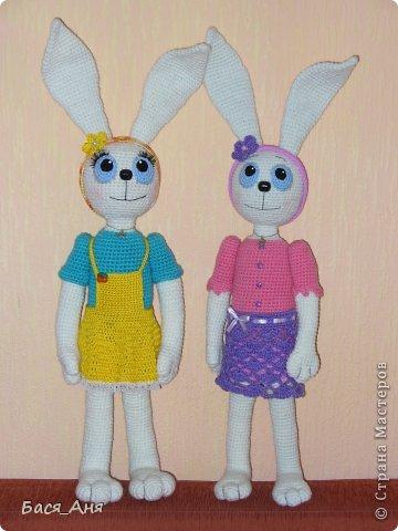 Вот такие сестрички родились у меня . Зайчики связанны на заказ.