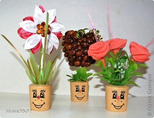 Доброго времени суток всем жителям страны! У меня в квартире появились такие веселые садовники)))  фото 5
