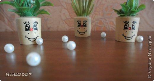 Доброго времени суток всем жителям страны! У меня в квартире появились такие веселые садовники)))  фото 3