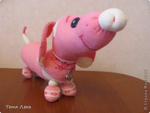 Игрушка Мастер-класс Шитьё Розовая такса из носков Носки фото 21