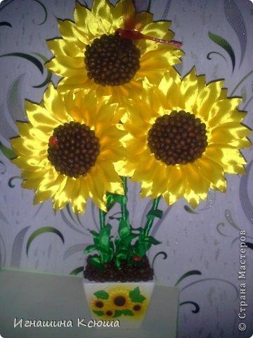 подсолнухи, попытка № 2  ,   высота-55см,  каждый цветок D-18см фото 1