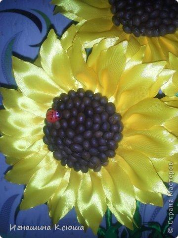 подсолнухи, попытка № 2  ,   высота-55см,  каждый цветок D-18см фото 2