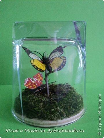 Вот такое чудо в стаканчике сотворил Миша. Внутри искусственные бабочки на настоящей веточке. Мох внизу тоже настоящий!