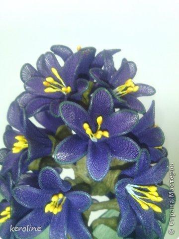 Это мой долгострой, 27 цветков, в каждом по 6 лепестков диаметром 1.5см, дней 5 я его делала и дня 2 собирала.Уф....    на предыдущие мои цветочки можно глянуть тут    http://stranamasterov.ru/node/771272      фото 3