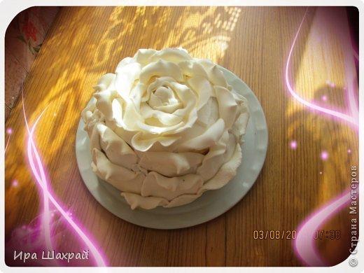 Кулинария Мастер-класс Моделирование конструирование Торт РОЗА МК по украшению Продукты пищевые фото 2