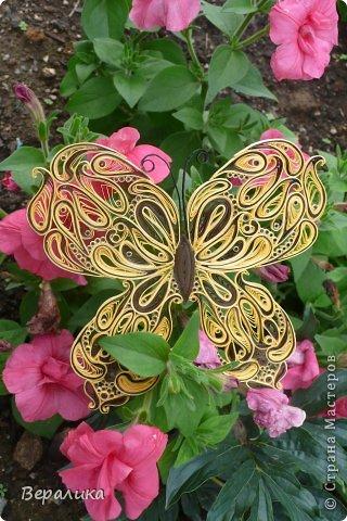 Сегодня я решила показать вам, дорогие мастерицы и мастера,бабочку в рамочке.При ее изготовлении использованы полоски шириной 3мм светло- желтого и коричневого цвета.Фон- бумага для скрапа светло-бежевого цвета с нарисоваными белыми цветочками, которые я сделала объемными с помощью дырокола. фото 19