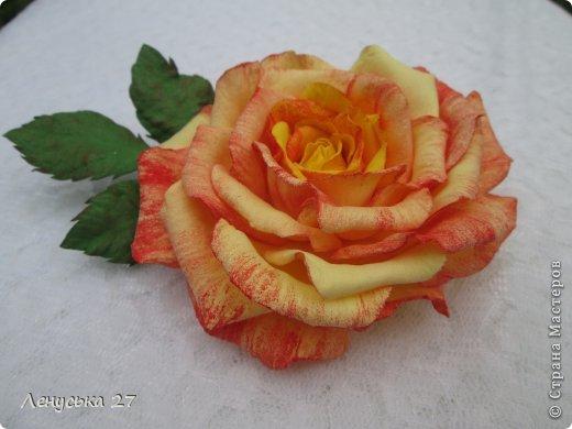 Девочки, на этот раз я с розами, никак не отпускают :-) Вот такая брошь. фото 1