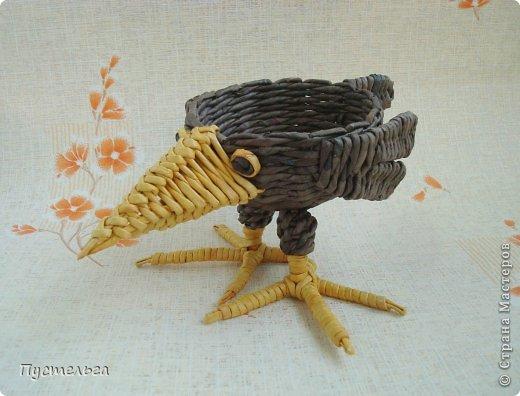 Мастер-класс Поделка изделие Плетение Сорока ворона Бумага Трубочки бумажные фото 2