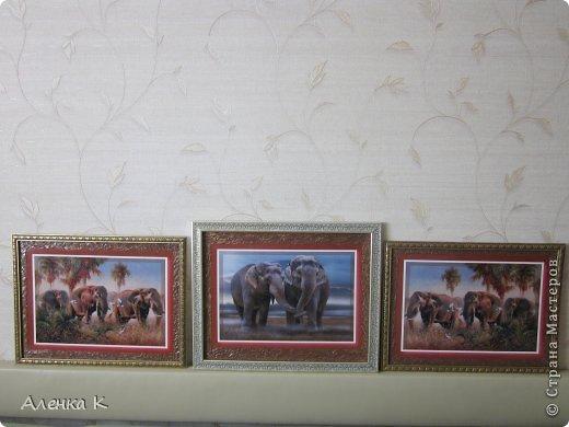 Здравствуйте дорогие мои девочки!Еще в прошлом году сестра заказала мне картину с 7-ю (да, да, вы не ослышались - не менее семи) слонами в свою новую комнату, но так как мы живем друг от друга далеко и встречаемся только раз в год, я решила не торопиться и обдумать все по-хорошему))), в конечном итоге - получилась не одна, а три картины с 8-ю слонами))) Сестра осталась довольная как слон, а я довольна, что она довольна))) фото 1