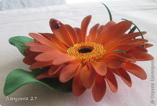 Здравствуйте, дорогие жители СМ. Сегодня я расскажу как крашу свои цветочки. Нам понадобятся: - готовые лепестки (см. МК часть l). - акриловая краска (подходит не всякая, см. информацию ниже); - губка; - салфетка. фото 14
