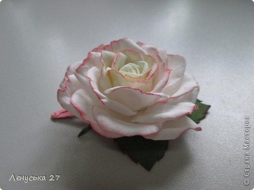 Здравствуйте, дорогие жители СМ. Сегодня я расскажу как крашу свои цветочки. Нам понадобятся: - готовые лепестки (см. МК часть l). - акриловая краска (подходит не всякая, см. информацию ниже); - губка; - салфетка. фото 11