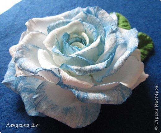 Здравствуйте, дорогие жители СМ. Сегодня я расскажу как крашу свои цветочки. Нам понадобятся: - готовые лепестки (см. МК часть l). - акриловая краска (подходит не всякая, см. информацию ниже); - губка; - салфетка. фото 1